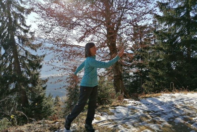 Qi Gong im Mountain Retreat Center